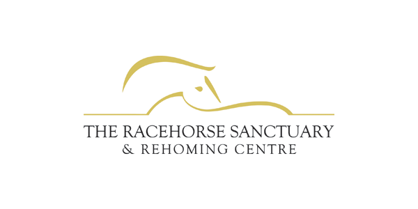 The Racehorse Sanctuary
